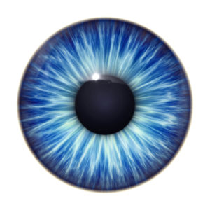 Blue Eye Vision and Strategy