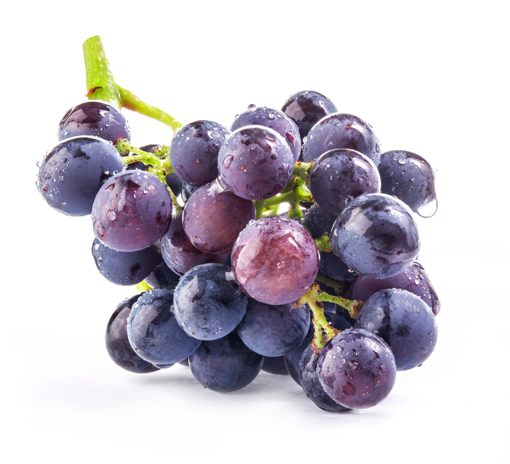 Grapes-yield-wine-clients-yield-referrals